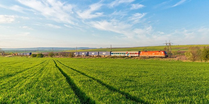 Balo Train